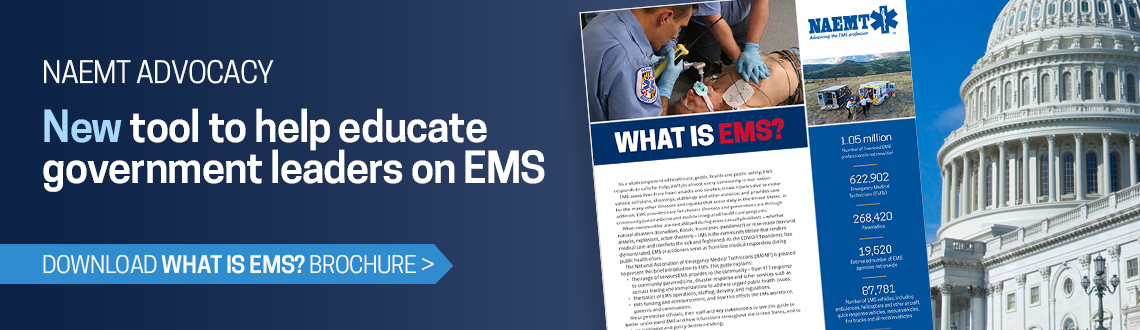 What Is EMS? brochure
